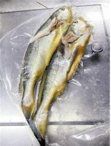 请问海鲜过敏可以吃木鱼花关东煮吗??
