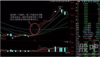 学术分析流派对股票价格波动原因的解释