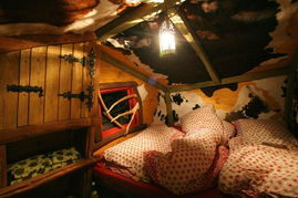 穿越树屋旅馆 让你体验 返老还童 童趣