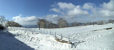 日本冬天自由行游记7天