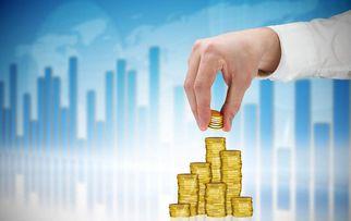 金融经济领域的零风险