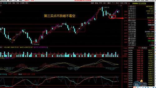 股票明天预测分析28