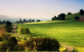 绿色草原风景高清电脑桌面壁纸高清大图预览1920 1200 风景壁纸下载