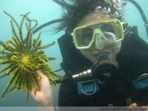 水下婚纱照拍摄技巧