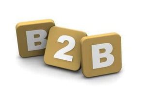 b2b是什么意思(B2B是什么网站)