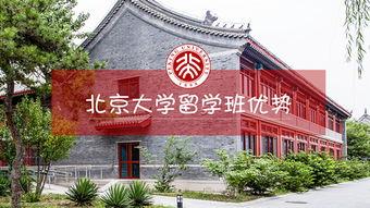 北京大学有哪些留学培训 专升本