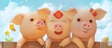 猪宝宝男孩起名字陈振东打免费分