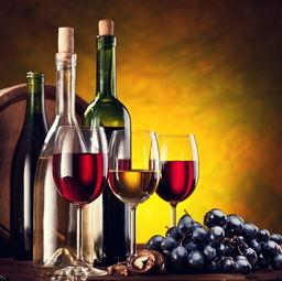 佐餐酒 葡萄酒 晚餐酒 搭配 红酒适合