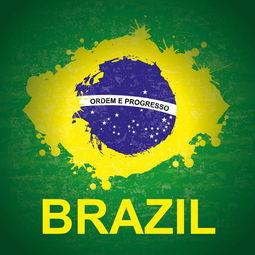 据《环球时报》报道,中国国际问题研究院发展中国家研究所所长王友明于1日对《环球时报》记者表示,博索纳罗上台后的重中之重是带领巴西走出经济低迷,而中国作为巴西的第一大贸易伙伴,重要性不可替代,简而言之,巴西是不