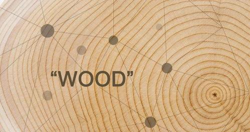 讲木材知识的课