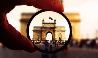 印度制造业季度调查