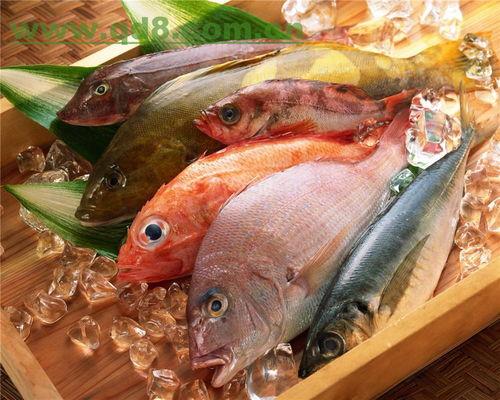 海鲜焖子的做法,海鲜焖子怎么做好吃,海鲜焖子
