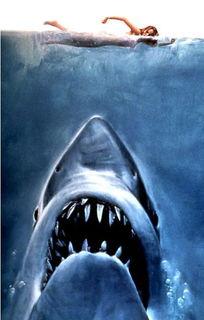 曝 埃及上演真实版 大白鲨 吃人事件 5