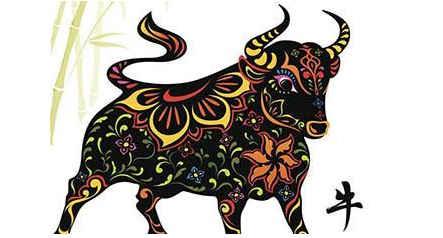 属牛是哪偏财运好