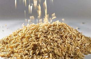 用稻壳掺土养花怎样发酵