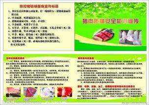 猪肉质量安全小常识