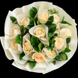 玫瑰小镇香槟玫瑰种子怎么获得