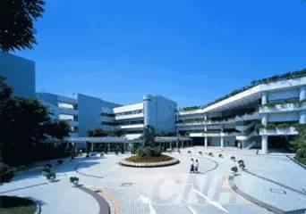 香港八大名校特色解析