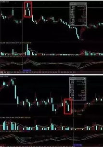为什么很难判断股票涨跌?
