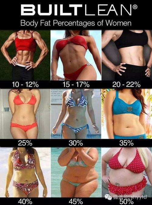 男性 率 体 脂肪