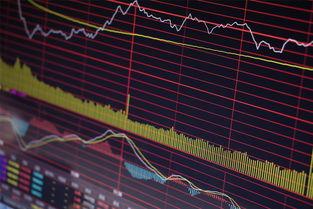 中国股市一共有多少支股票?