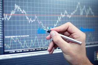 股票的计量单位是什么?