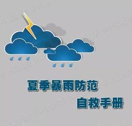黄色暴雨防范小知识