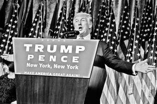 2016年美国总统选举9日落下帷幕,共和党总统候选人唐纳德.特朗普击败民主党总统候选人希拉里.克林顿,当选美国第58届总统.