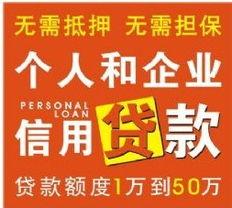上海无抵押小额贷款(上海市哪个无抵押贷款)
