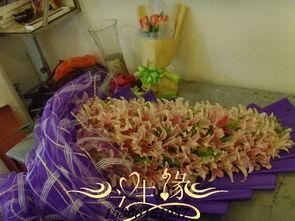 南京水养花卉基地