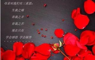 关于母爱的散文诗句