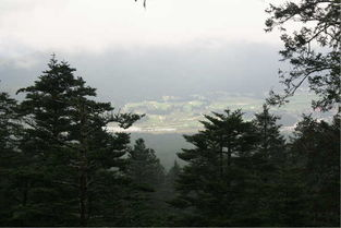 影儿旅行之香格里拉梅里雪山图片