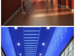 室内休闲会所 大棚su模型及效果图设计图下载 图片7.11MB 建筑模型库 SU模型