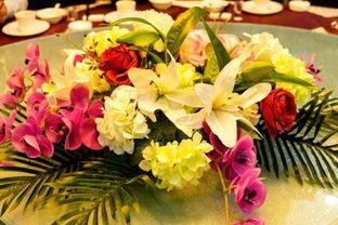 適合擺放餐桌水養花卉