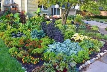形容菜园惬意的诗句(宁静悠闲的生活的诗句)