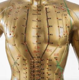 论十二经脉气血盛衰对针灸临床的指导作用  何为中医经络仪