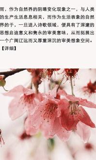春天的诗句古诗词