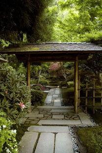 禅意 庭院