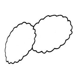 简笔画饼干画法7
