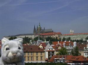 毛绒兔子也爱旅行 英男子为玩具拍照留念