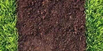 养花改良酸性土壤