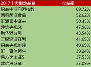 中国最好的指数基金(买哪个指数基金比较好)  外汇平台开户  第3张