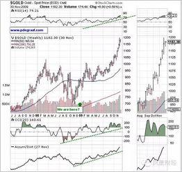 当经济危机来临,股市崩盘时,钱去了哪里?