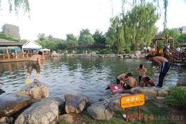 深水池游泳 禁示牌醒目