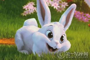 兔子怎么折_站立的兔子