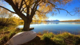 秋季唯美自然风光