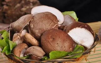 赣州白癜风医院 拒绝野味!香菇好吃又辅助白斑复色