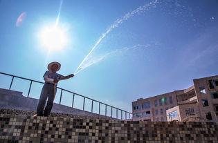 夏日暴晒能出汗排湿毒 有益于养生 靠谱吗