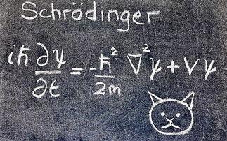 股价是否遵循量子力学中的薛定谔方程。