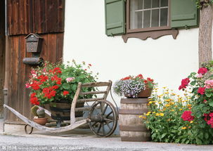 欧洲原木花车小院图片